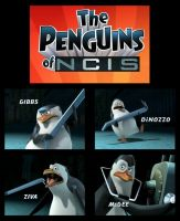 Penguins of NCIS by gotrei