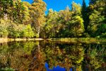 Sanatorium Lake Mt Macedon by DanielleMiner