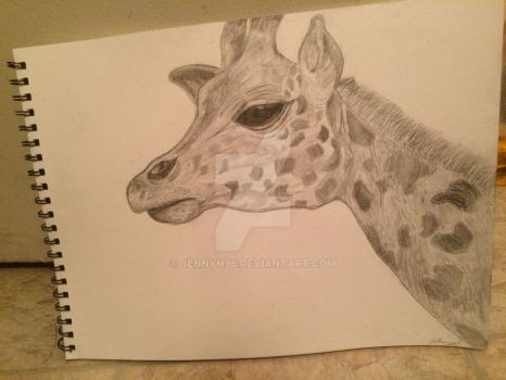 Giraffe portrait by jennyh96