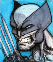 Wolverine quick sketch w markers by MikeVanOrden