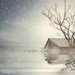 .: Pure Winter :. by oguzceng