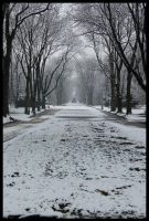 Warsaw's winter by Moriano