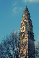 City Hall Cardiff by nectar666