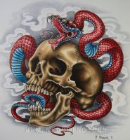 Skull with Snake by cshoneck