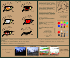 Pierce's eyes -for large ref- by shorty-antics-27