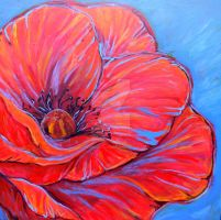 Red Poppy by jupiterjenny