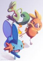 Gen III Starters by Penny-Dragon