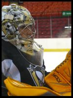 Marc-Andre Fleury by meteor-shower-x3