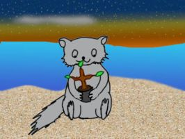 Raccoon on Beach by Red-Rat-Writer