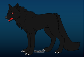 Black's wolf form by howlingathemoon