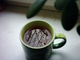 Pennyroyal Tea by LadyClasp