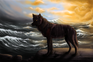 Sea Wolf by wolf-minori