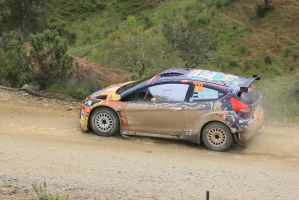 2014, Karl Kruuda, Ford, Ourique, Rally Portugal by F1PAM