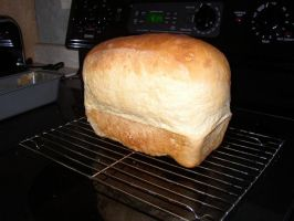 SUPER muffed-up bread by my-chemical-emo