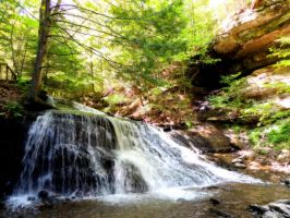 Hell's Hollow Falls by dmguthery