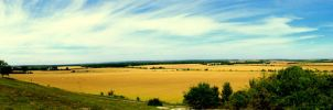 Danebury Panoramic by Kaz-D