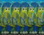 Joes Fish. 3D-Stereogram by 3Dimka