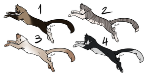 Point Adoptables 008 by WolfPawdoptables