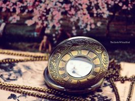 As time stops. by TheLittleWhiteBird