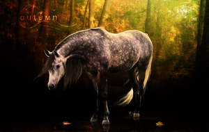 Autumn. by Arya-Susy