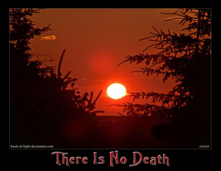 There Is No Death by ShyloLove