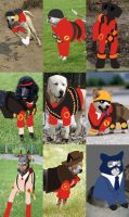 DOG FORTRESS 2 by goldfishoevil