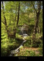 Water-mill 3 by Neshom
