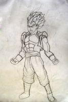 DragonBall Z by nikster08