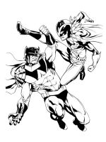 Batman and Robin wingman and redbird by RobertAtkins
