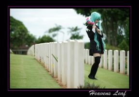 Vocaloid, pic 26 by Heavens-Leaf