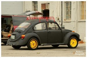 Flat Black Bug by TheMan268