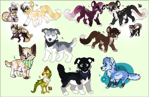 Adoptable batch all taken by Okoe