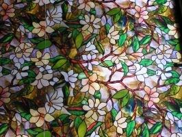Stained Glass 01 by Lucy-Eth-Stock