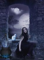 Witch and Cat by maiarcita