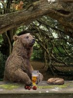 Bear'n'beer by Lesard