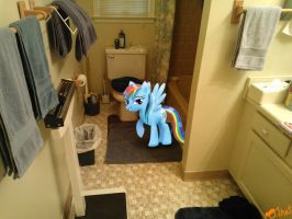Rainbow Dash after her shower by OJhat