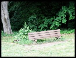 The Bench by jibirelle