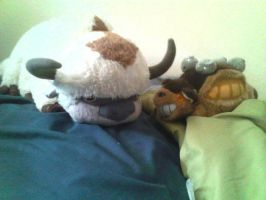 Selling Appa and Catbus Plushies by Izumi-Kage