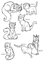 Dragon Age Cats by SonOfLaufey