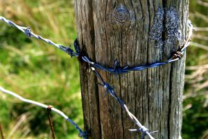 Barbed wire2 by H3llzAng3l