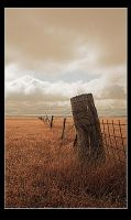 Unrabbitproof Fence by Sun-Seeker