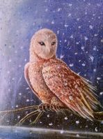 snow owl by beowolfkiller2