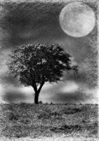 moon tree by popp2