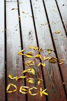 Wet leaves on a wet deck by MasterFruityLoops