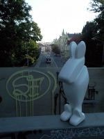 CITY RABBIT for IGA by romanolsanik