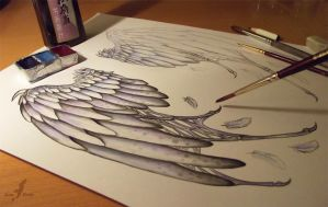 Fallen angel's wings  - Work in progress by AlviaAlcedo