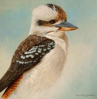 LAUGHING KOOKABURRA  12by10 inches Oil on Panel by chandlerwildlifeart
