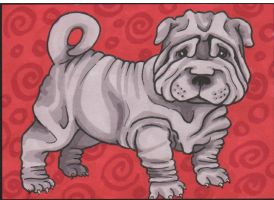 Shar Pei 2 Sketch Card by angelacapel