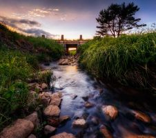 Fresh Flow by MikkoLagerstedt