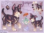 Juniper Ref by Colonels-Corner